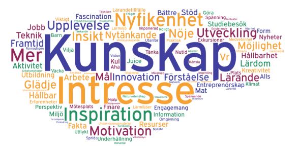 Kunskap, intresse, inspiration och motivation i fokus i ordmoln